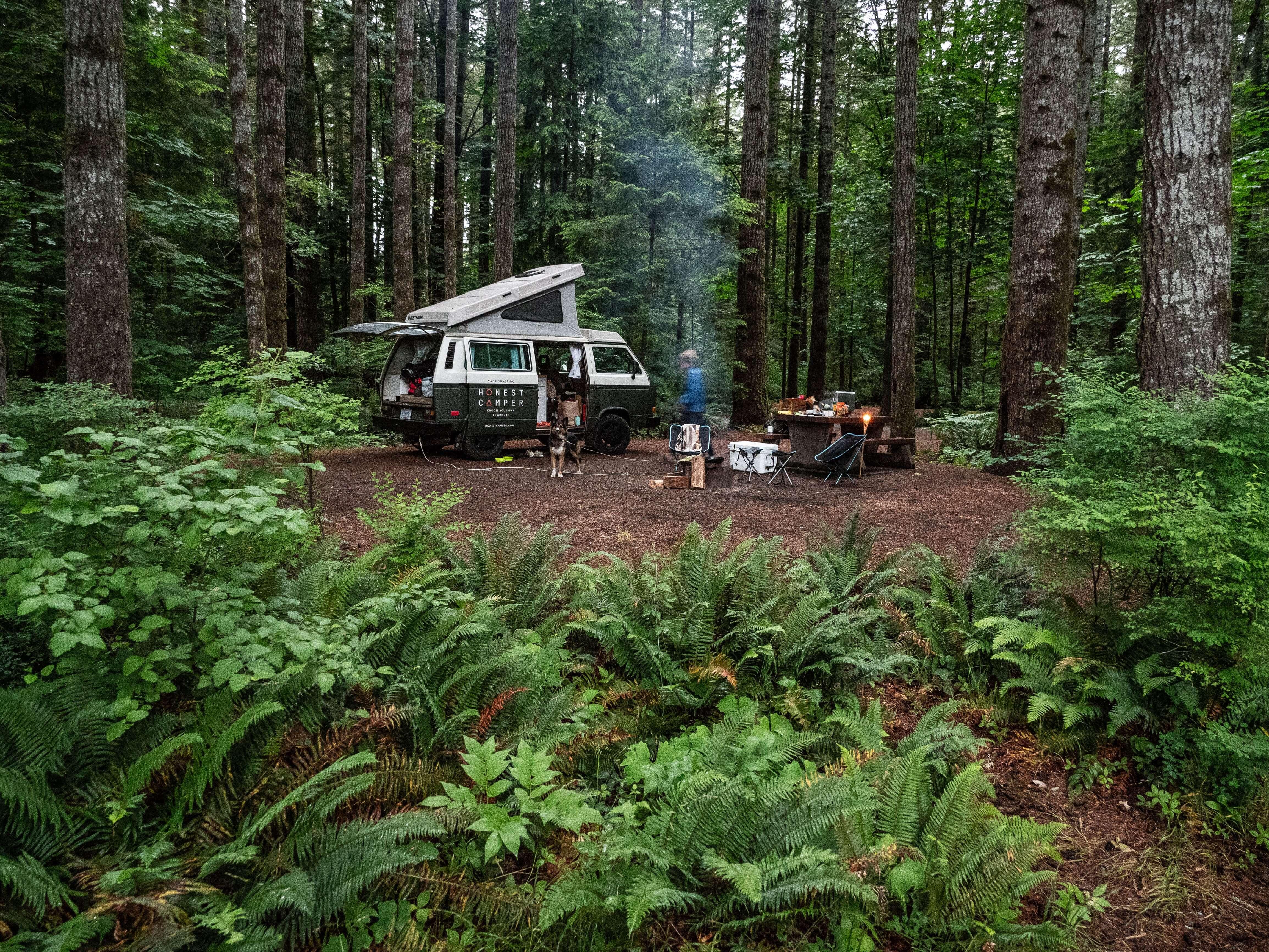 Honest Camper Van