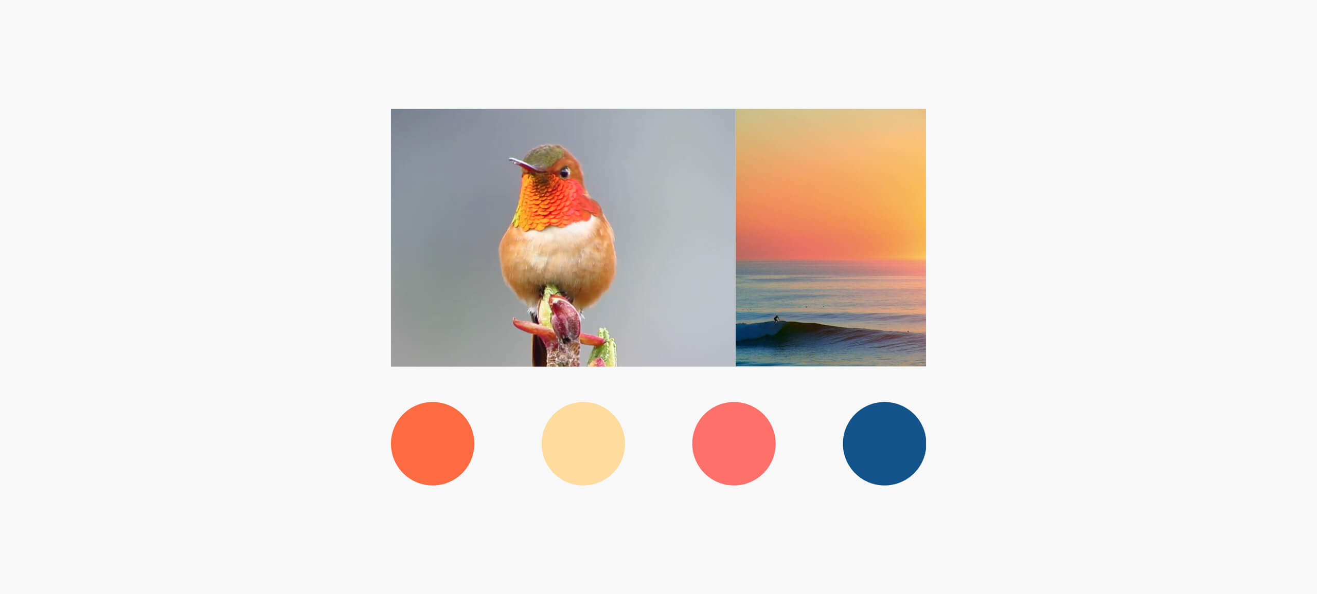 Hummingbird-Smart-Colours_MR